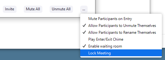 """how to find """"lock meeting"""" in Zoom"""