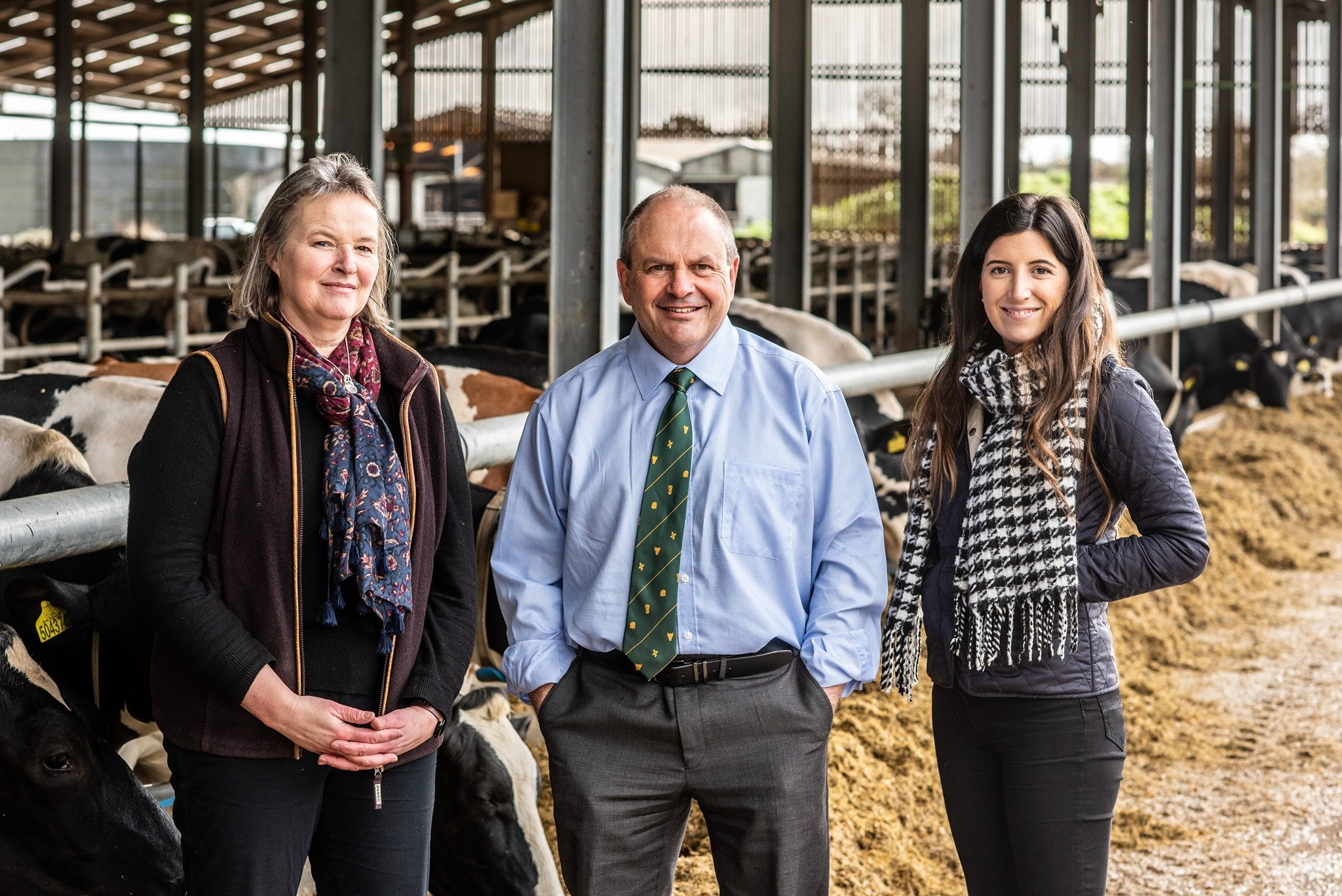 Team at Pat Tomlinson Accountancy stood together outside a cow shed